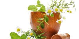 Phytothérapie, soins naturels, soins aux plantes, baumes, stick, bien être, bougie, massage, bougie de massage, huiles, macérat, mâcérat, plantes qui soignent, gemmothérapie