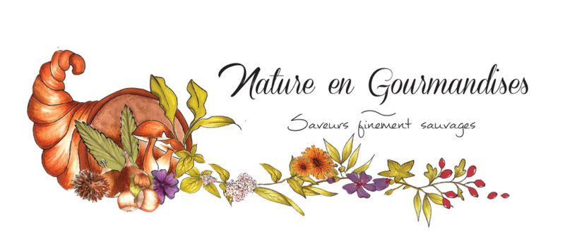 logo nature en gourmandises